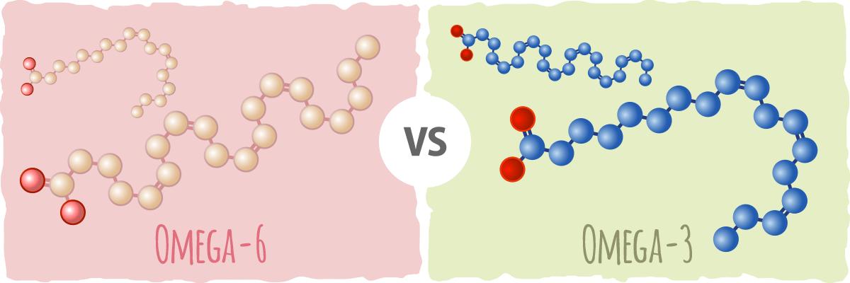 Do you need to have a good omega 3 vs omega 6 ratio?