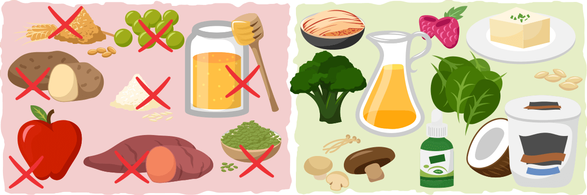 How to limit your carb intake on a vegan ketogenic diet.